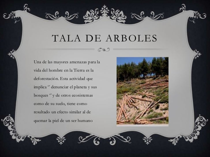 TALA DE ARBOLESUna de las mayores amenazas para lavida del hombre en la Tierra es ladeforestación. Esta actividad queimpli...