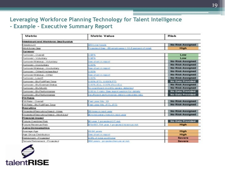 19Leveraging Workforce Planning Technology for Talent Intelligence- Example - Executive Summary Report