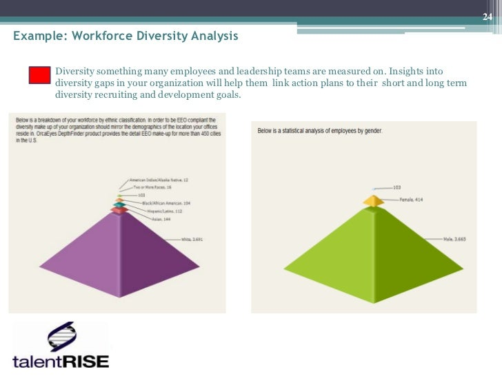 24Example: Workforce Diversity Analysis      Diversity something many employees and leadership teams are measured on. Insi...
