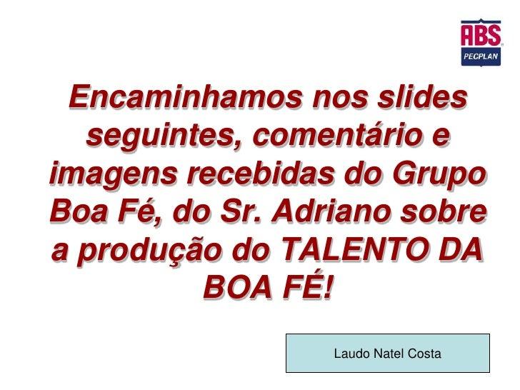 Encaminhamos nos slides  seguintes, comentário eimagens recebidas do GrupoBoa Fé, do Sr. Adriano sobrea produção do TALENT...