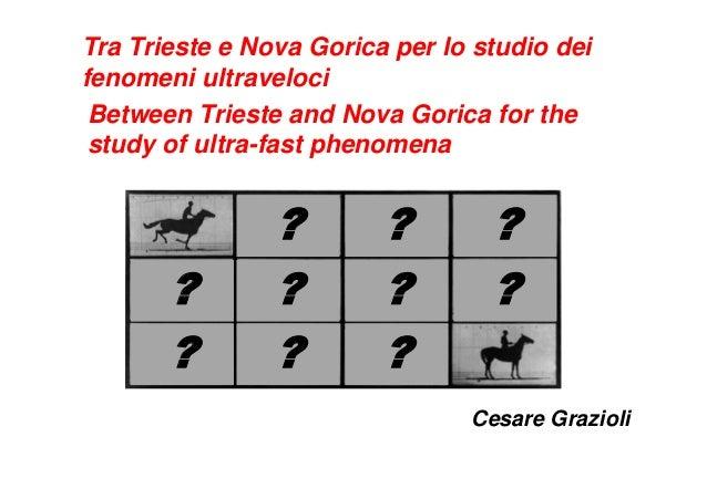 Tra Trieste e Nova Gorica per lo studio deifenomeni ultravelociBetween Trieste and Nova Gorica for thestudy of ultra-fast ...