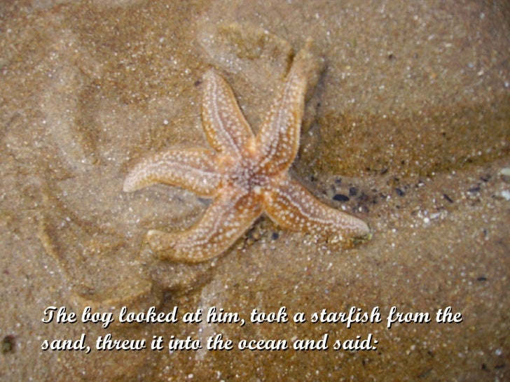 The boy looked at him, took a starfish from the sand, threw it into the ocean and said: