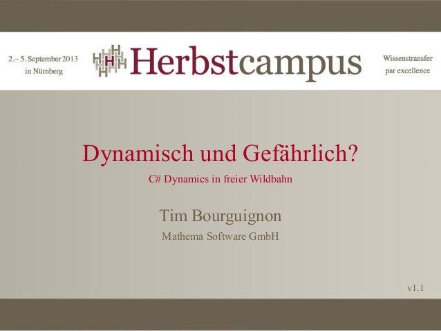 Dynamisch und Gefährlich? C# Dynamics in freier Wildbahn  Tim Bourguignon Mathema Software GmbH  v1.1