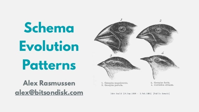 Schema Evolution 