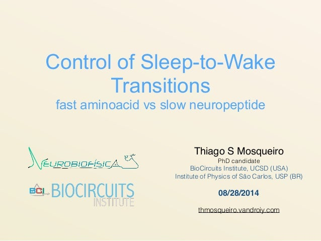 Control of Sleep-to-Wake Transitions fast aminoacid vs slow neuropeptide Thiago S Mosqueiro PhD candidate BioCircuits Inst...