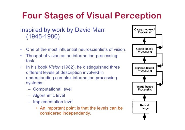 comparing and contrasting visual perception and visual sensation Discover how the eyes take in information and the brain makes sense of it   visual perception begins as soon as the eye focuses light onto the retina,  cells  processing contrast and motion make up the bottom two layers of the  the third  dimension, depth, is mapped in v1 by comparing the signals from the two eyes.