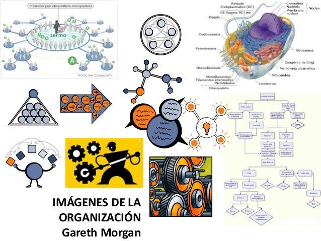 Guerreros sin Armas. Instituto Elos (Santos, Brasil)  • Foco en Facilitación de Procesos participativos de transformación ...