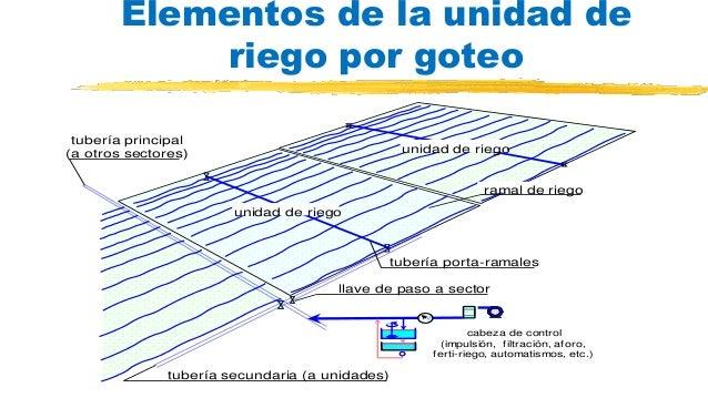 Taller de instalaci n de sistema de riego por goteo en - Tuberias de riego por goteo ...