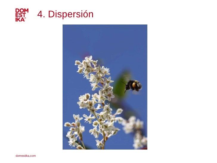 4. Dispersión