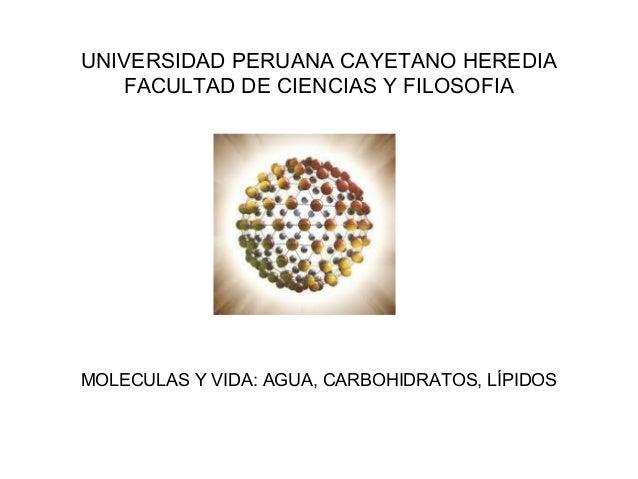 UNIVERSIDAD PERUANA CAYETANO HEREDIA FACULTAD DE CIENCIAS Y FILOSOFIA  MOLECULAS Y VIDA: AGUA, CARBOHIDRATOS, LÍPIDOS