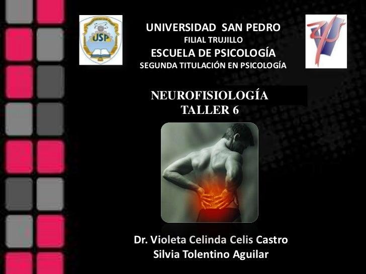 UNIVERSIDAD SAN PEDRO          FILIAL TRUJILLO   ESCUELA DE PSICOLOGÍA SEGUNDA TITULACIÓN EN PSICOLOGÍA   NEUROFISIOLOGÍA ...