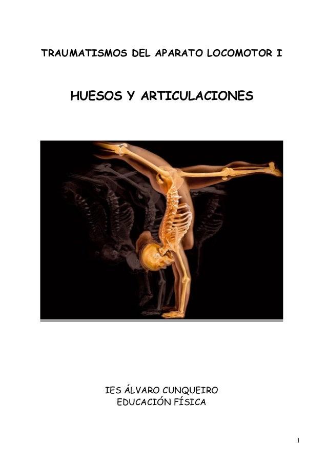 Huesos y articulaciones.