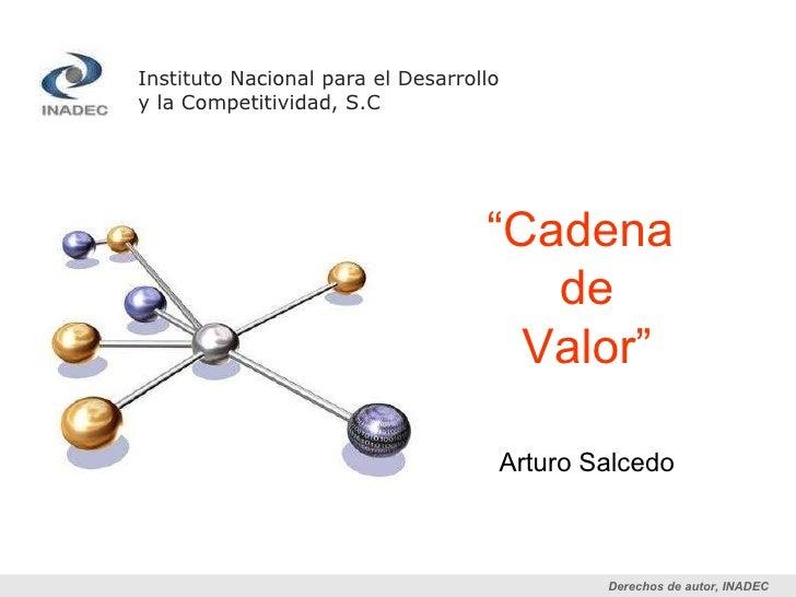 """Instituto Nacional para el Desarrollo  y la Competitividad, S.C """" Cadena  de Valor"""" Arturo Salcedo"""