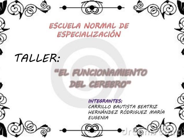 """TALLER:""""EL FUNCIONAMIENTODEL CEREBRO""""CARRILLO BAUTISTA BEATRIZHERNÁNDEZ RÓDRIGUEZ MARÍAEUGENIA"""