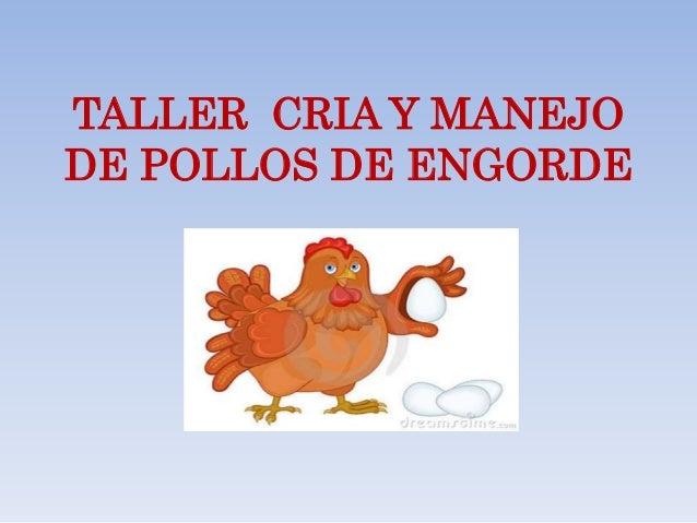 Manual de crianza de pollos de engorde pdf.