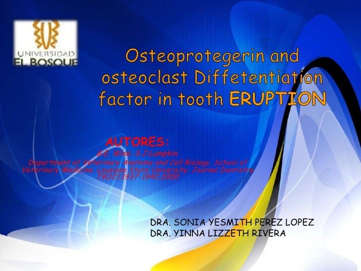 Osteoprotegerin and osteoclastDiffetentiation factor in tooth ERUPTION<br />AUTORES: <br />G.E. Wise; S.J:Lumpkin.<br />De...