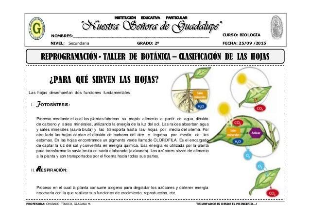 PROFESORA: CHURANO TINOCO, GIULIANA M. TRIUNFADORES DESDE EL PRINCIPIO…! CURSO: BIOLOGÍA NIVEL: Secundaria GRADO: 2º FECHA...