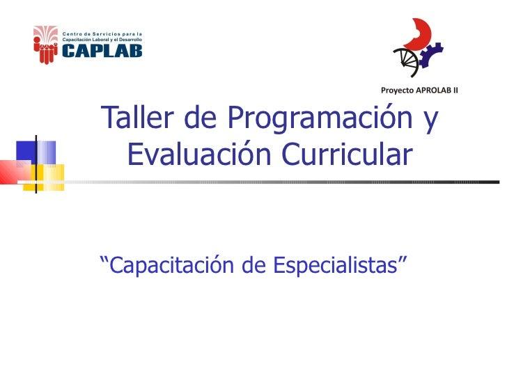 """Taller de Programación y Evaluación Curricular """" Capacitación de Especialistas"""""""