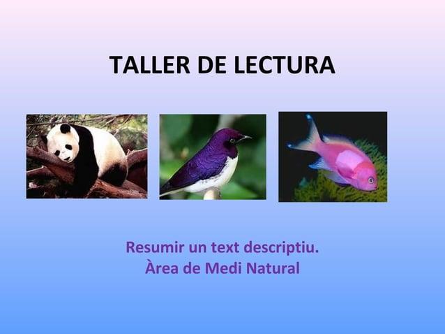 TALLER DE LECTURA  Resumir un text descriptiu. Àrea de Medi Natural
