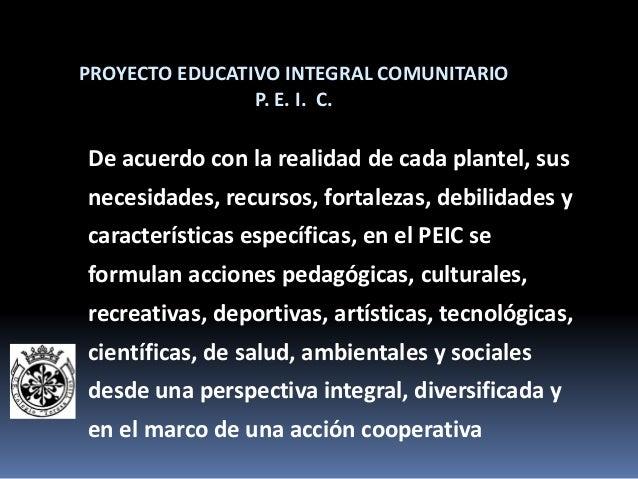 Proyecto Escolar Integral Comunitario Peic Taller De Inducci N