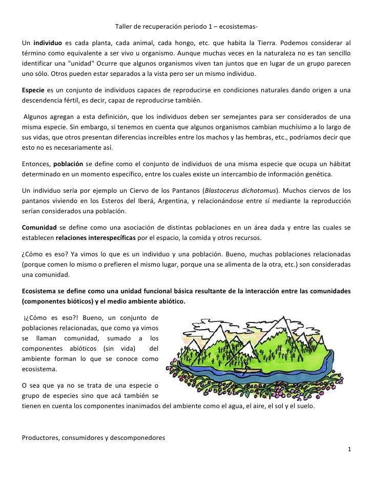 Taller de recuperaci n 1 periodo de ecosistemas - El taller de pinero ...