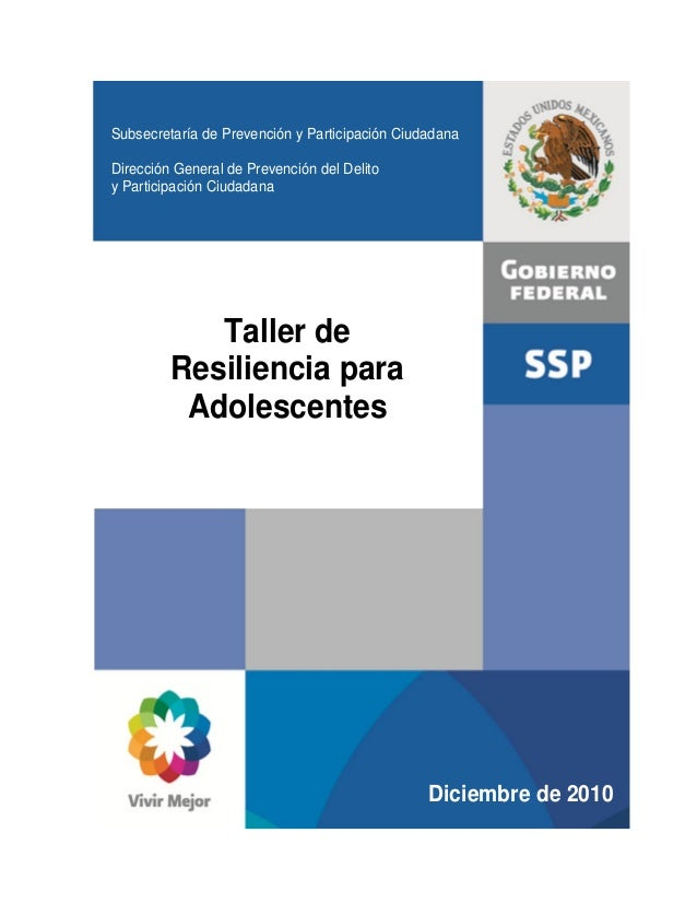 Subsecretaría de Prevención y Participación Ciudadana Dirección General de Prevención del Delito y Participación Ciudadana...