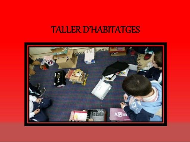 TALLER D'HABITATGES