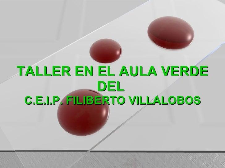 TALLER EN EL AULA VERDE DEL  C.E.I.P. FILIBERTO VILLALOBOS