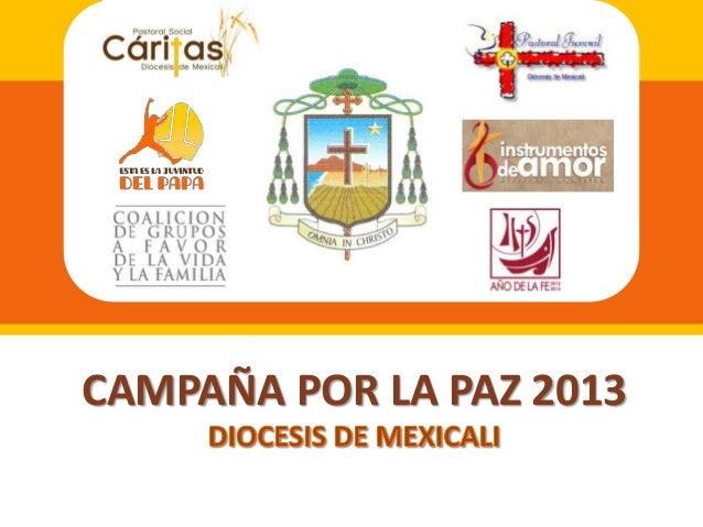 CAMPAÑA POR LA PAZ 2013