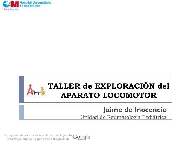 TALLER de EXPLORACIÓN del                               APARATO LOCOMOTOR                                                 ...