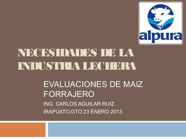 NECESIDADES DE LAINDUSTRIA LECHERA   EVALUACIONES DE MAIZ   FORRAJERO   ING. CARLOS AGUILAR RUIZ   IRAPUATO,GTO 23 ENERO 2...