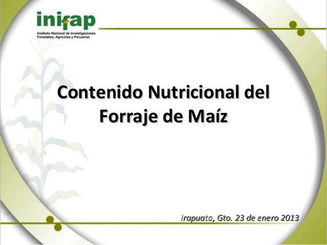 Contenido Nutricional del    Forraje de Maíz              Irapuato, Gto. 23 de enero 2013
