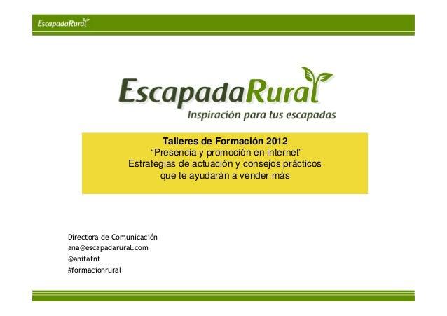 """Talleres de Formación 2012                     """"Presencia y promoción en internet""""                Estrategias de actuación..."""