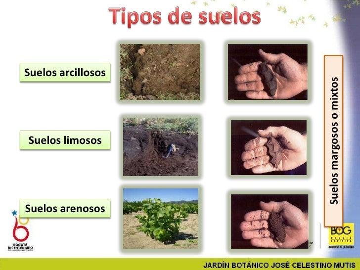 Taller jardiner a - Tipos de suelos para casas ...