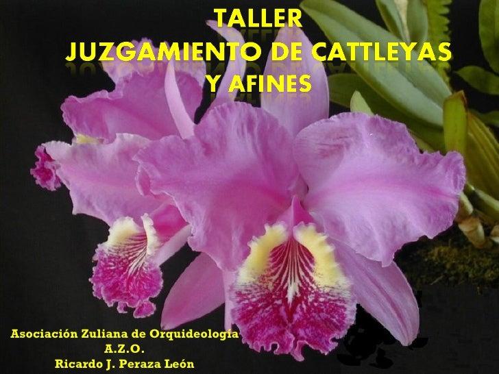 Asociación Zuliana de Orquideología A.Z.O. Ricardo J. Peraza León