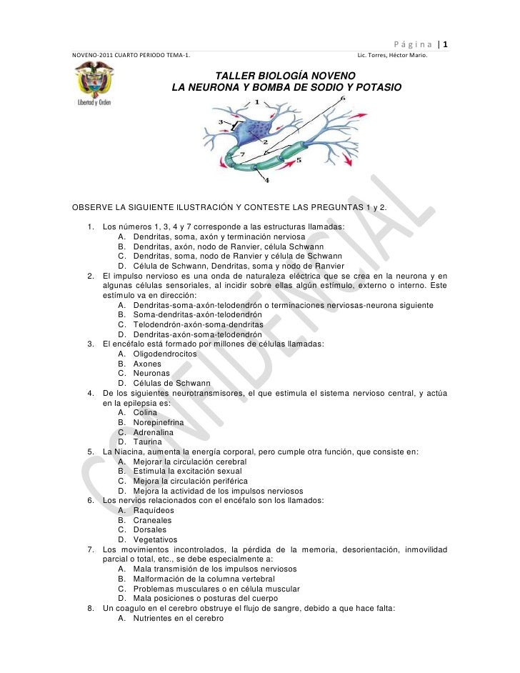21565-25<br />TALLER BIOLOGÍA NOVENO<br /> LA NEURONA Y BOMBA DE SODIO Y POTASIO<br />OBSERVE LA SIGUIENTE ILUSTRACIÓN Y C...