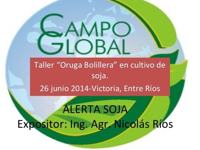 """ALERTA SOJA Expositor: Ing. Agr. Nicolás Ríos Taller """"Oruga Bolillera"""" en cultivo de soja. 26 junio 2014-Victoria, Entre R..."""