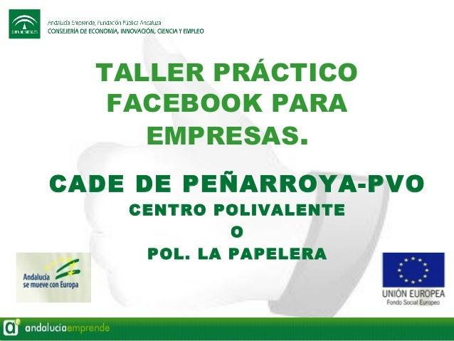TALLER PRÁCTICO FACEBOOK PARA EMPRESAS. CADE DE PEÑARROYA-PVO CENTRO POLIVALENTE O POL. LA PAPELERA