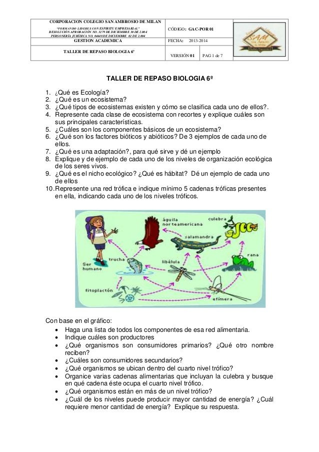 Taller repaso biologia - El taller de pinero ...
