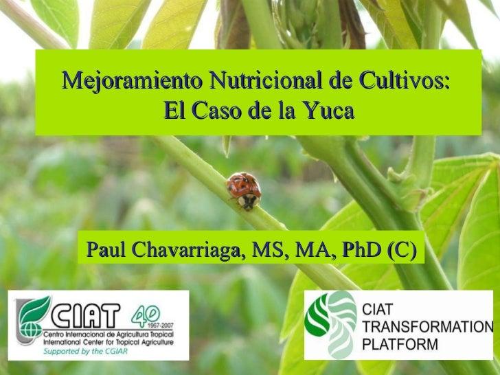 Mejoramiento Nutricional de Cultivos:  El Caso de la Yuca Paul Chavarriaga, MS, MA, PhD (C)
