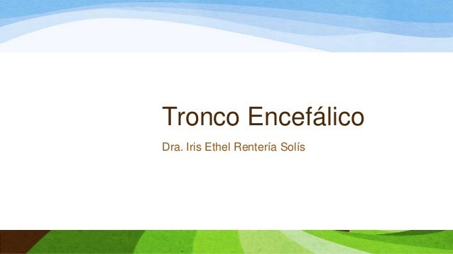 Tronco Encefálico Dra. Iris Ethel Rentería Solís