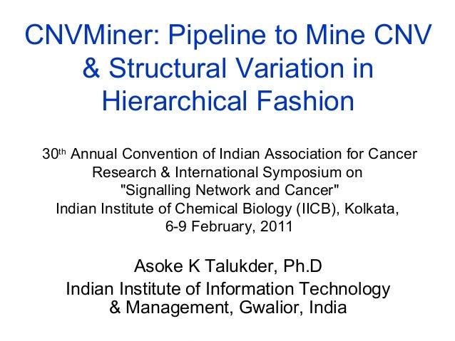 IACR, Kolkata: 6-9 February 2011 © Asoke K Talukder 1/3118th June 20010 CNVMiner: Pipeline to Mine CNV & Structural Variat...