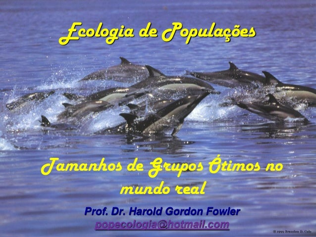 Ecologia de PopulaçõesTamanhos de Grupos Ótimos no        mundo real    Prof. Dr. Harold Gordon Fowler      popecologia@ho...