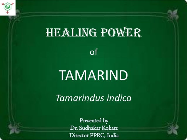 Healing power of TAMARIND Tamarindus indica Presented by Dr. Sudhakar Kokate Director PPRC, India
