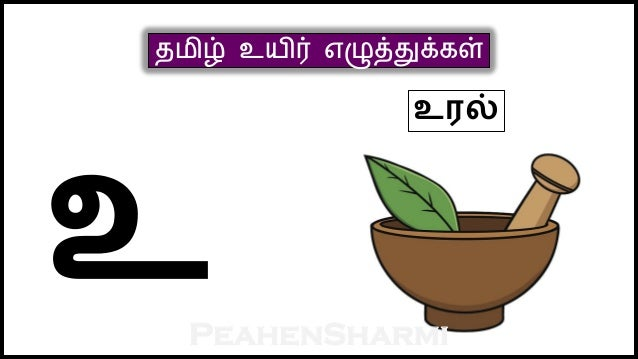 tamil college student english problem in tamil katturai Tamil test papers and worksheets to help the students preparing for primary 1 to primary 6 tamil exams including primary school leaving exam (psle) tamil, we provide interactive online practice tests and excllent tamil test papers and worksheets in pdf for download here.