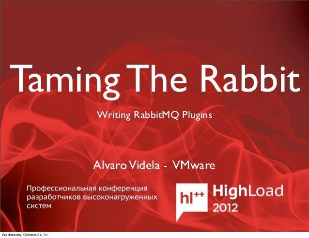Taming The Rabbit                            Writing RabbitMQ Plugins                            Alvaro Videla - VMwareWed...
