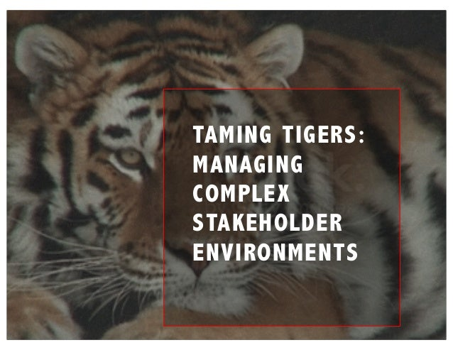 TAMING TIGERS: MANAGING COMPLEX STAKEHOLDER ENVIRONMENTS