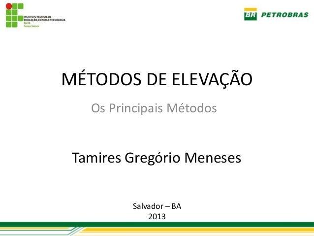 MÉTODOS DE ELEVAÇÃO   Os Principais Métodos Tamires Gregório Meneses         Salvador – BA             2013