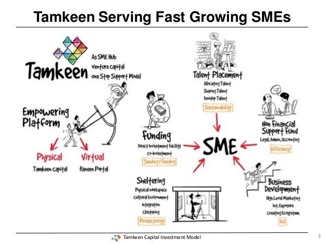 Tamkeen capital investment model 2013