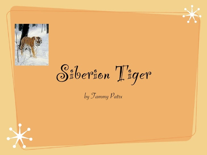 Siberion Tiger     by Tammy Patrx